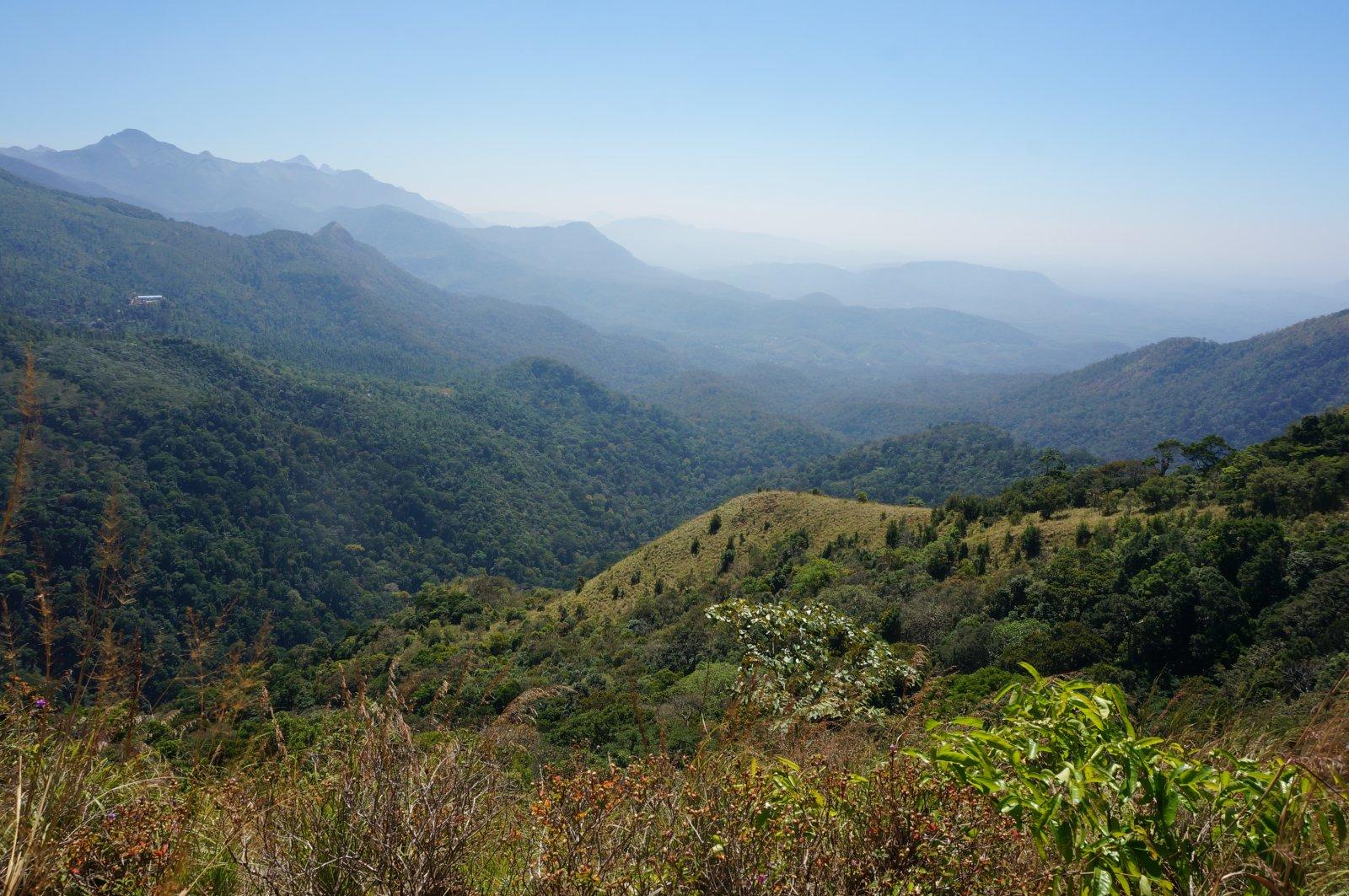 Великолепные пейзажи гор Южной Индии — экскурсия в Понмуди на 1 день