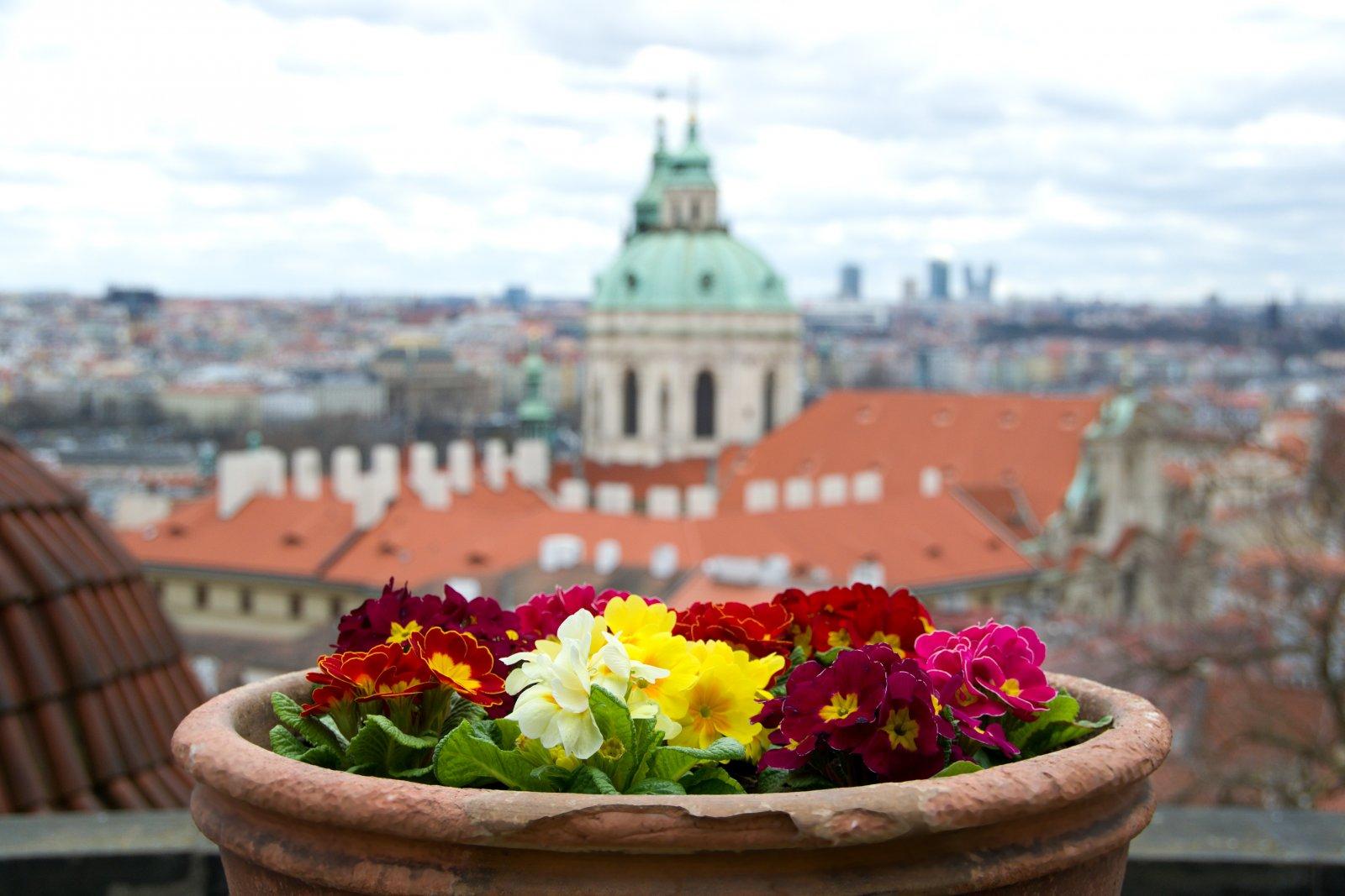 Экскурсия по Пражскому Граду и Малой стороне