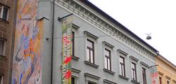 Музей романской культуры в Брно