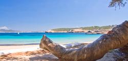 Пляж Кала-Басса
