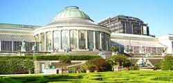 Ботанический сад Брюсселя
