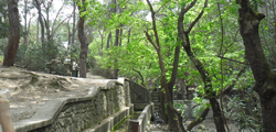 Долина 7 источников на Родосе