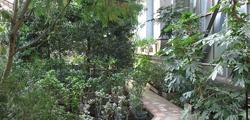 Сибирский ботанический сад
