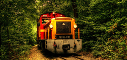 Лесная железная дорога в Пече