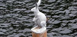 Памятник зайцу