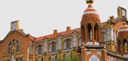 Институт Пере Мата
