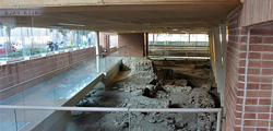 «Дом хирурга» в Римини