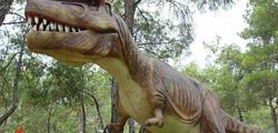 Парк динозавров в Кемере