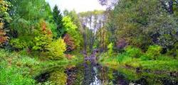 Переславский дендрологический сад