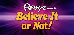 Музей Рипли Believe It or Not! в Копенгагене