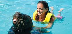 Интерактивный аквариум в Канкуне