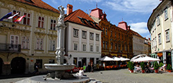 Площадь Старый Трг в Любляне
