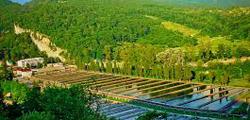 Форелевое хозяйство в Адлере