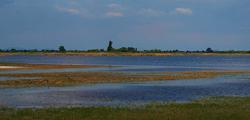 Озеро Нойзидлер-Зее