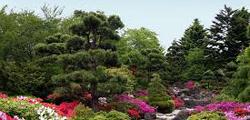 Ботанический сад Порту