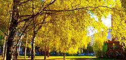 Парк Пушкина в Нижнем Новгороде