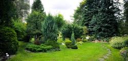 Ботанический сад ТвГУ