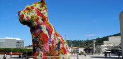 Цветочная собака в Бильбао
