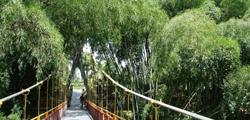 Городской парк Тивата