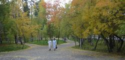 Городской сад Томска