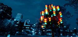 Светофорное дерево в Пензе