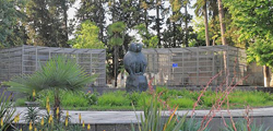 Памятник обезьянам в Сухуме