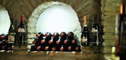 Винохозяйство Джони Окруашвили в Сигнахи