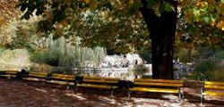 Ботанический сад Хофгартен