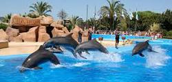 Дельфинарий «Маринеленд» на Майорке
