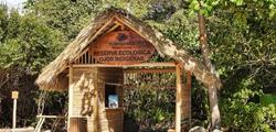 Экопарк «Природные глаза» в Пунта-Кане