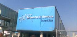 Аквариум Генуи