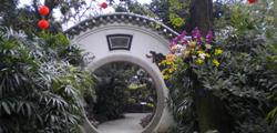 Сад орхидей в Гуанчжоу