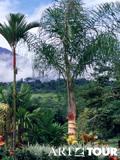 Коста Рика - это... Что такое Коста Рика?